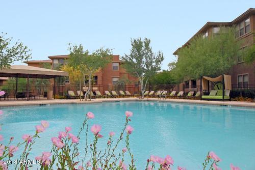 19777 N 76TH Street #1147, Scottsdale, AZ 85255 (MLS #5772324) :: My Home Group