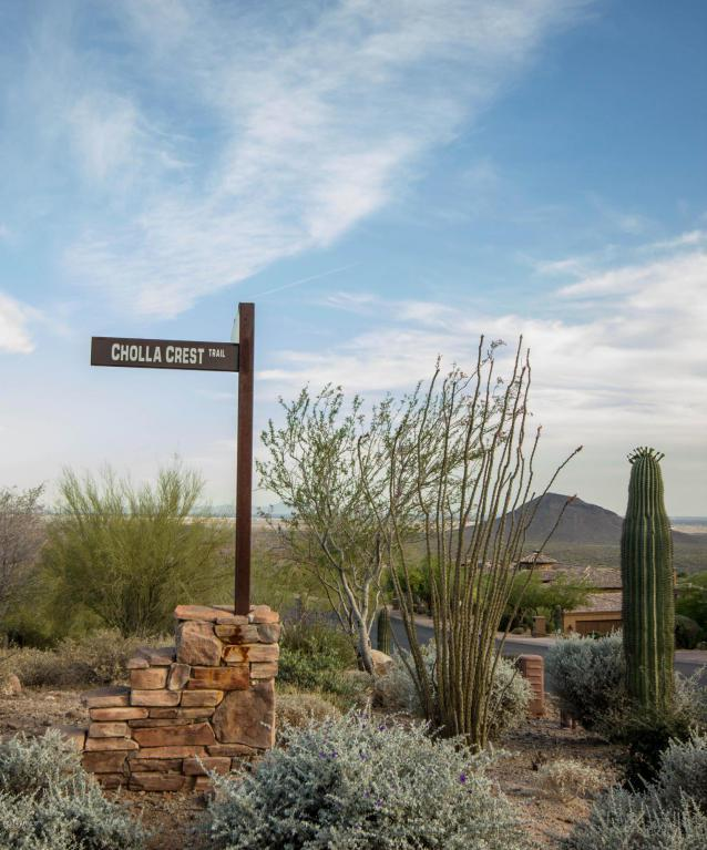 15227 E Cholla Crest Trail, Fountain Hills, AZ 85268 (MLS #5774866) :: Phoenix Property Group