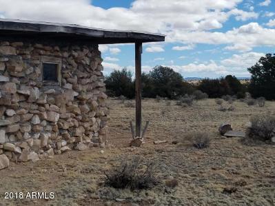5724 W Blue Star Trail, Williams, AZ 86046 (MLS #5775818) :: Brett Tanner Home Selling Team