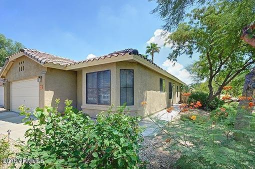 20215 N 33RD Street, Phoenix, AZ 85050 (MLS #5782911) :: The Everest Team at My Home Group