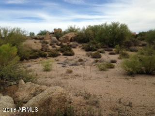 28349 N 113th Street, Scottsdale, AZ 85262 (MLS #5784005) :: Kortright Group - West USA Realty