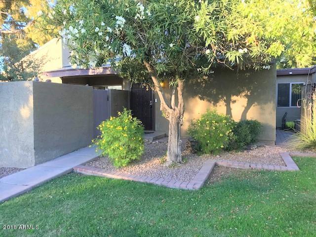 911 S Hacienda Drive, Tempe, AZ 85281 (MLS #5784728) :: The Pete Dijkstra Team
