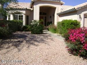 20378 N 53RD Avenue, Glendale, AZ 85308 (MLS #5784864) :: Lux Home Group at  Keller Williams Realty Phoenix