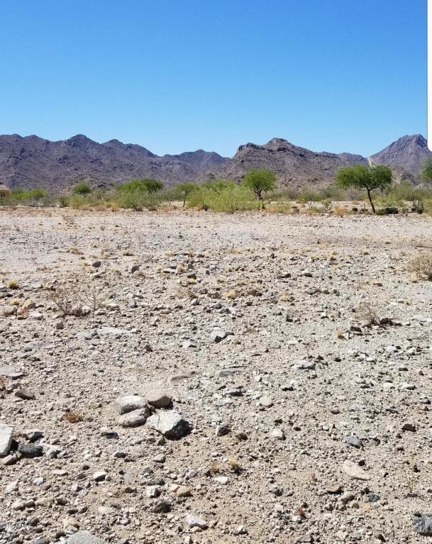 3924 N Gila Plain Trail, Buckeye, AZ 85396 (MLS #5788471) :: Brett Tanner Home Selling Team