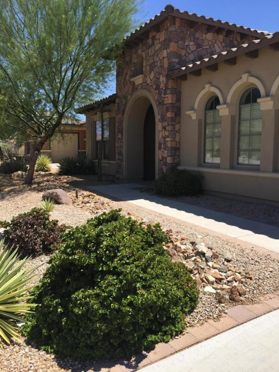 17923 W Narramore Road, Goodyear, AZ 85338 (MLS #5788483) :: Kortright Group - West USA Realty