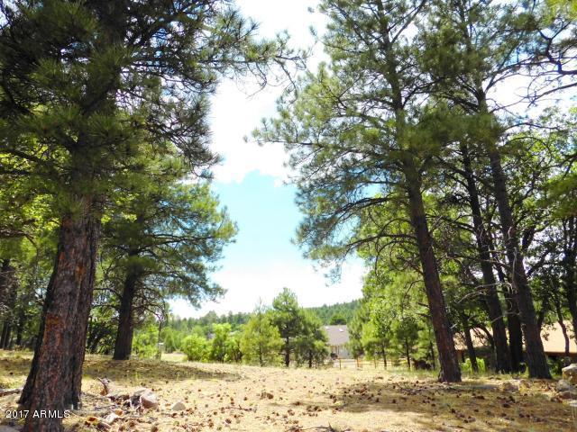 Lot 201 Torrey Pines Drive, Williams, AZ 86046 (MLS #5791065) :: Brett Tanner Home Selling Team