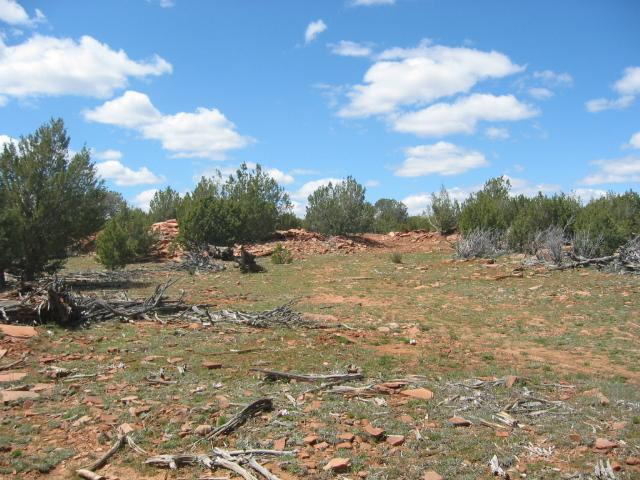 00 N Askfork Area Road, Ash Fork, AZ 86320 (MLS #5791585) :: Devor Real Estate Associates