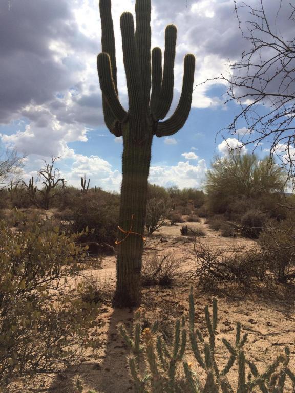 3061x N 172nd Street, Rio Verde, AZ 85263 (MLS #5793205) :: Desert Home Premier