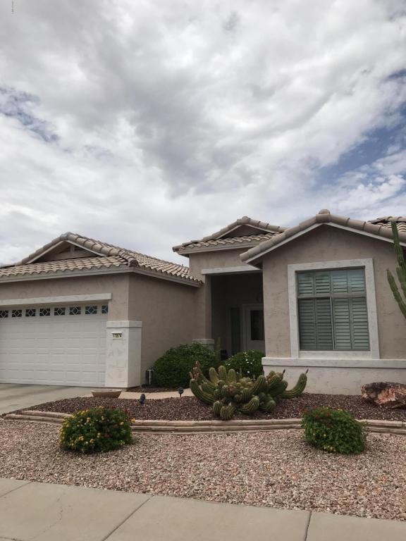17874 W Spencer Drive, Surprise, AZ 85374 (MLS #5794161) :: Keller Williams Legacy One Realty