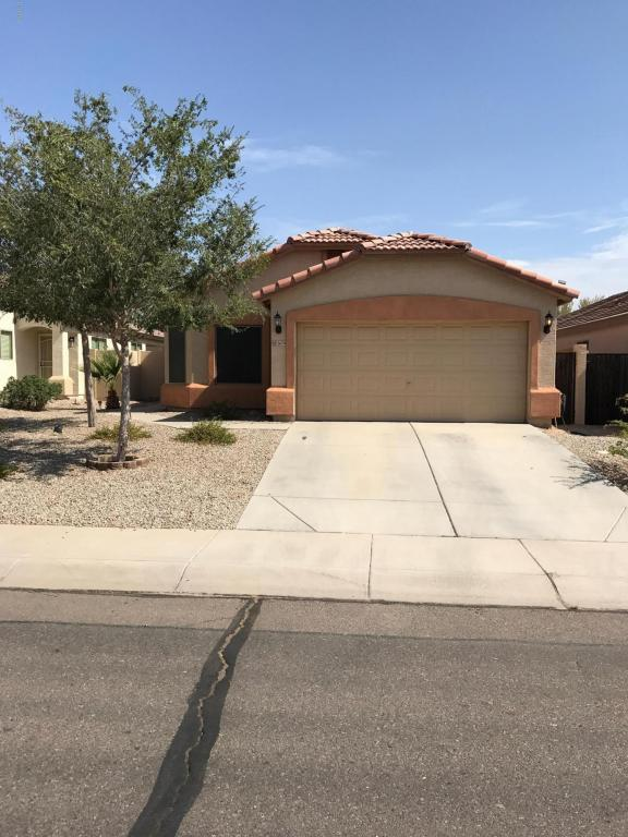 3674 W Yellow Peak Drive, Queen Creek, AZ 85142 (MLS #5797079) :: Group 46:10