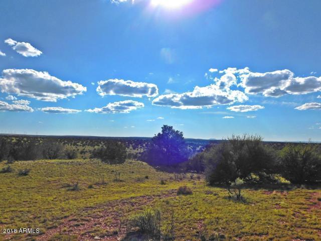 6229 S Rising Sun Road, Williams, AZ 86046 (MLS #5798500) :: Brett Tanner Home Selling Team