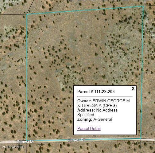 CCR Unit 2 Lot 203, Heber, AZ 85928 (MLS #5800284) :: The Garcia Group