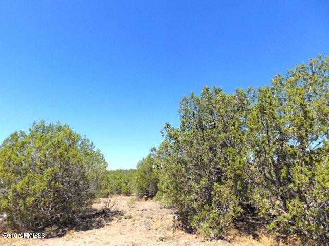 2035 W Picacho Drive, Ash Fork, AZ 86320 (MLS #5803549) :: Yost Realty Group at RE/MAX Casa Grande