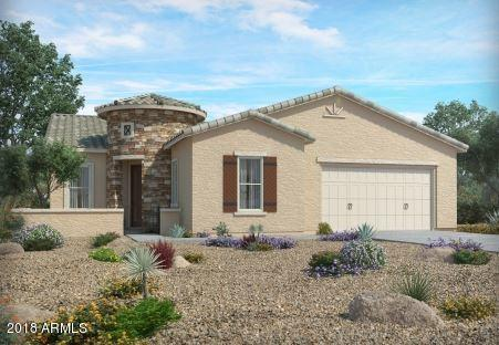41635 W Snow Bird Lane, Maricopa, AZ 85138 (MLS #5806559) :: The Pete Dijkstra Team