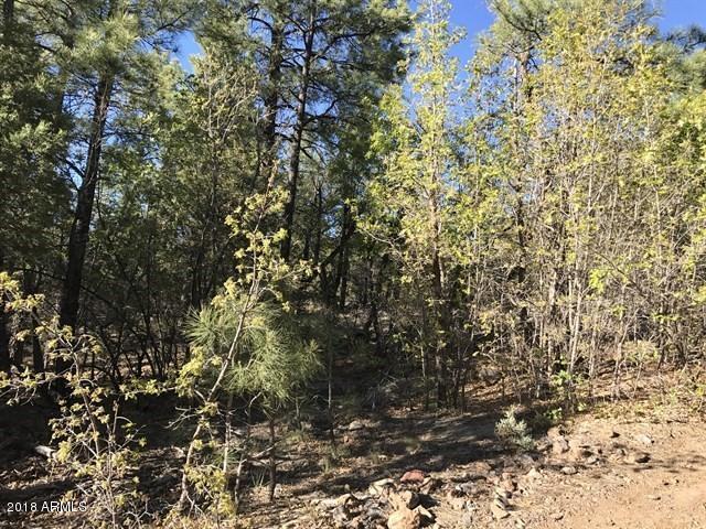 935 Miramon Drive, Lakeside, AZ 85929 (MLS #5807714) :: Kortright Group - West USA Realty