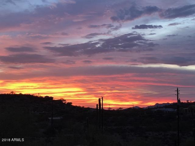 3828 S Iroquois Lane, Gold Canyon, AZ 85118 (MLS #5808931) :: Yost Realty Group at RE/MAX Casa Grande