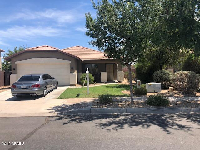 11317 W Lincoln Street, Avondale, AZ 85323 (MLS #5809045) :: Kortright Group - West USA Realty