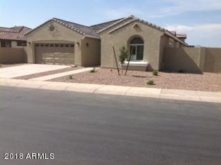 3028 E Quenton Street, Mesa, AZ 85213 (MLS #5809348) :: Yost Realty Group at RE/MAX Casa Grande