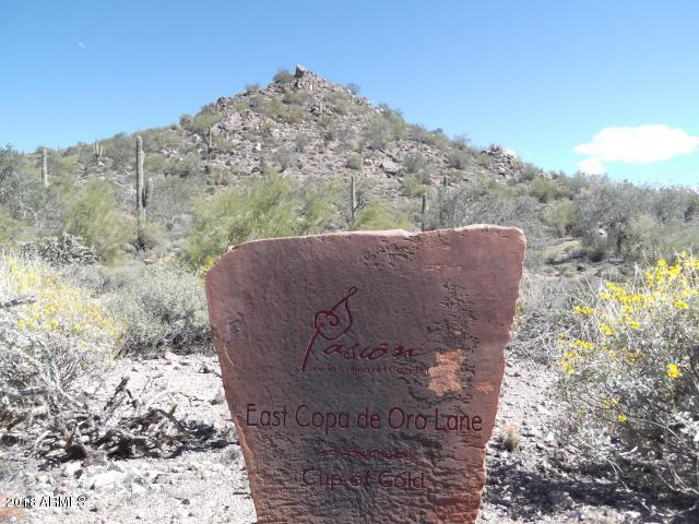10795 E Copa Del Oro Lane, Gold Canyon, AZ 85118 (MLS #5812294) :: Conway Real Estate