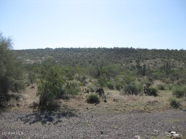 48859 N Fig Springs Road, New River, AZ 85087 (MLS #5818410) :: Brett Tanner Home Selling Team