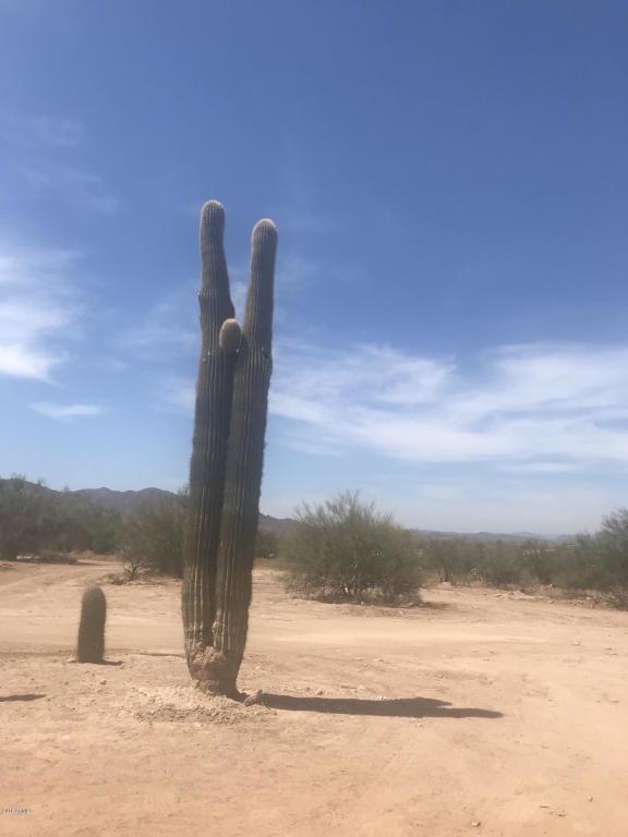 1706 E Circle Mountain Road, New River, AZ 85087 (MLS #5819579) :: Riddle Realty