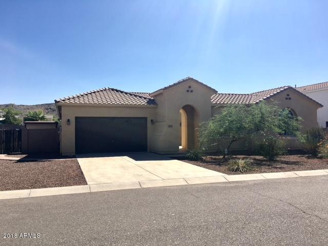 4607 W Lodge Drive, Laveen, AZ 85339 (MLS #5821269) :: Group 46:10