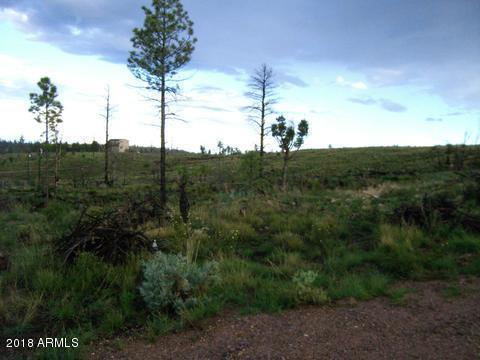 1811 Ansell Road, Overgaard, AZ 85933 (MLS #5821317) :: The Daniel Montez Real Estate Group