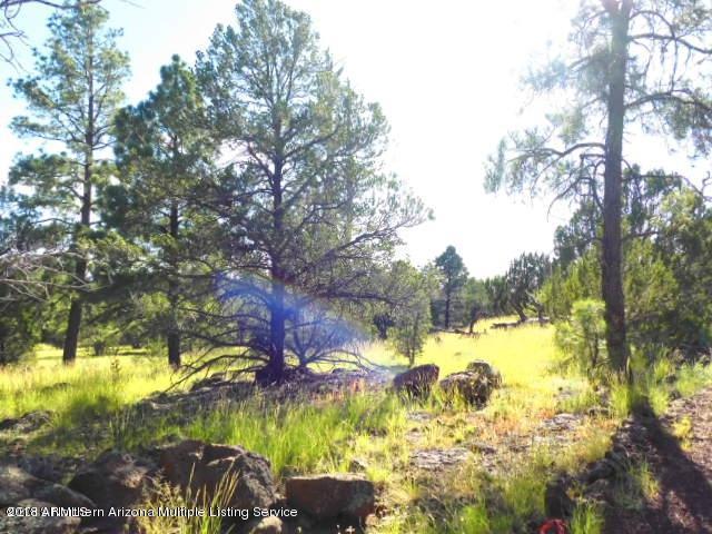 136 E Riverside Drive, Williams, AZ 86046 (MLS #5822654) :: Yost Realty Group at RE/MAX Casa Grande