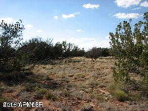 6017 Wide Sky Road, Overgaard, AZ 85933 (MLS #5823505) :: Synergy Real Estate Partners