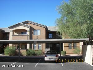 235 E Ray Road #1009, Chandler, AZ 85225 (MLS #5824514) :: The Everest Team at My Home Group
