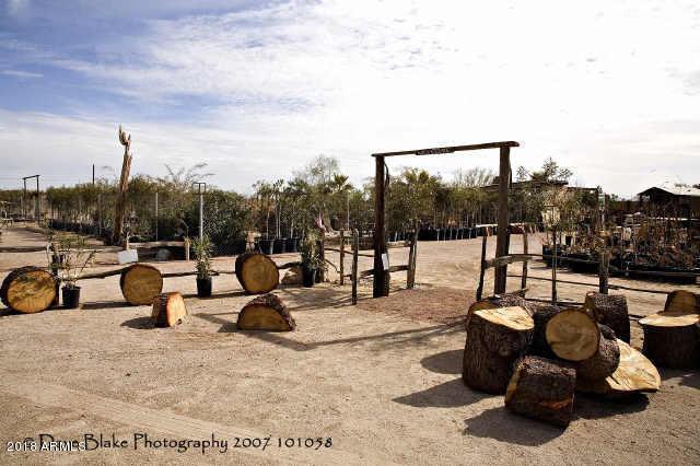 29139 W Roosevelt Street, Buckeye, AZ 85396 (MLS #5825013) :: RE/MAX Excalibur