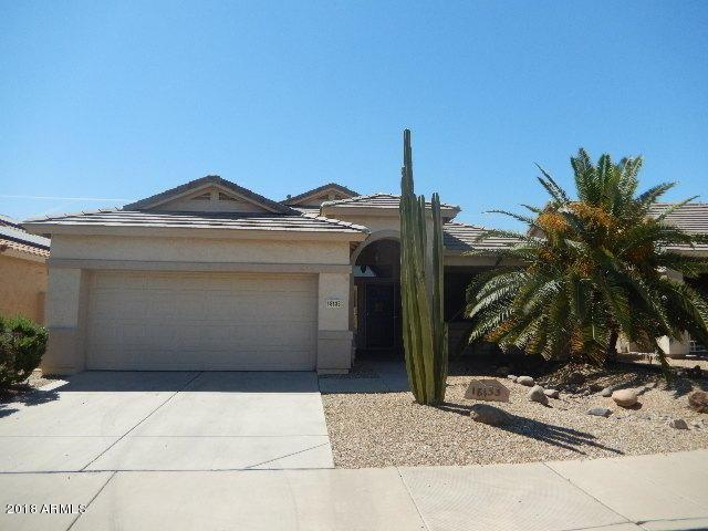 18133 W Camino Real Drive, Surprise, AZ 85374 (MLS #5829729) :: Desert Home Premier
