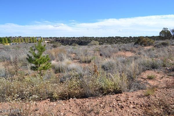 4457 Silver Hawk Trail, Snowflake, AZ 85937 (MLS #5839330) :: Brett Tanner Home Selling Team