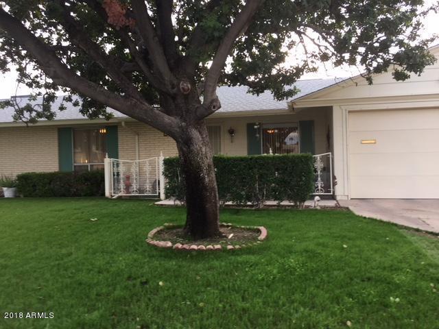 10215 W Kingswood Circle, Sun City, AZ 85351 (MLS #5840292) :: Kepple Real Estate Group