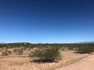 5900 N 380th Avenue, Tonopah, AZ 85354 (MLS #5841548) :: The Daniel Montez Real Estate Group