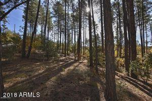 3190 Tree Tops Trail, Prescott, AZ 86303 (MLS #5843783) :: The W Group