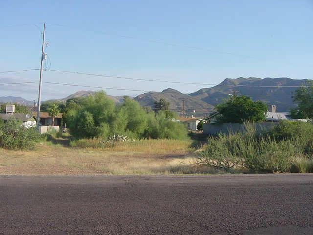 0 W Gray Drive, Superior, AZ 85173 (MLS #5844413) :: The Daniel Montez Real Estate Group
