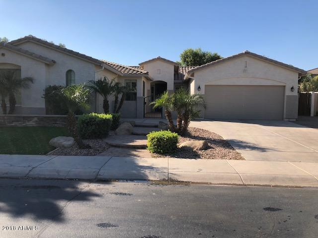 4556 S Buckskin Way, Chandler, AZ 85249 (MLS #5845970) :: Team Wilson Real Estate