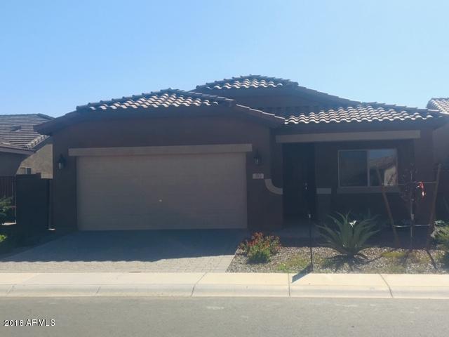 393 W Evergreen Pear Avenue, San Tan Valley, AZ 85140 (MLS #5846146) :: The W Group