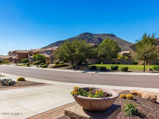 26405 N 54TH Avenue, Phoenix, AZ 85083 (MLS #5848552) :: The Laughton Team