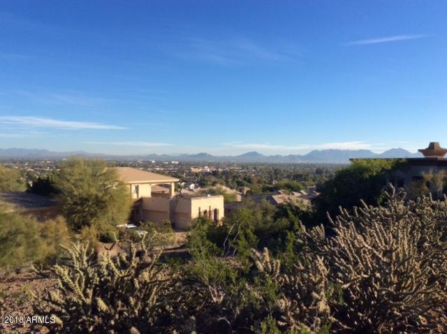2631 E Spring Road Road, Phoenix, AZ 85032 (MLS #5851650) :: Conway Real Estate