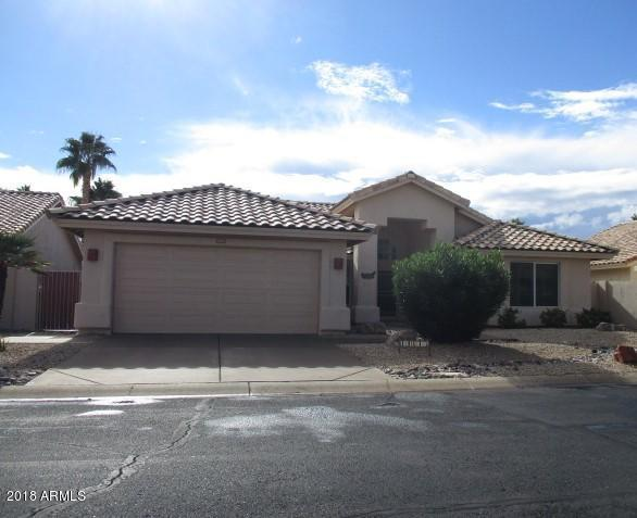 14613 W Morning Star Trail, Surprise, AZ 85374 (MLS #5859216) :: Yost Realty Group at RE/MAX Casa Grande