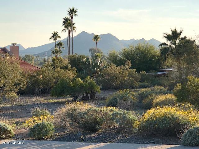 13036 N 23RD Place, Phoenix, AZ 85022 (MLS #5860182) :: Yost Realty Group at RE/MAX Casa Grande