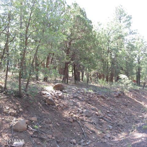TBD N Springer Mountain Drive, Lakeside, AZ 85929 (MLS #5864782) :: Arizona 1 Real Estate Team