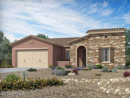 41688 W Cribbage Road, Maricopa, AZ 85138 (MLS #5868380) :: Revelation Real Estate