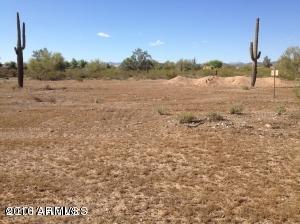 30805 N 163RD Drive, Surprise, AZ 85387 (MLS #5869665) :: Conway Real Estate