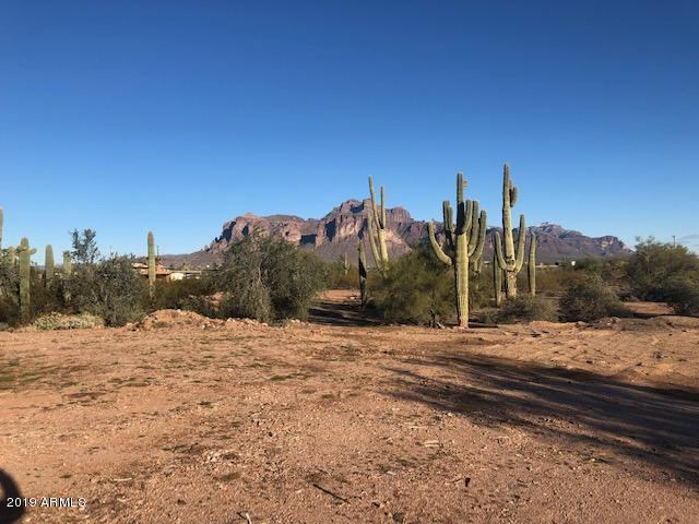 1815 N Bowman Road, Apache Junction, AZ 85119 (MLS #5871604) :: Brett Tanner Home Selling Team