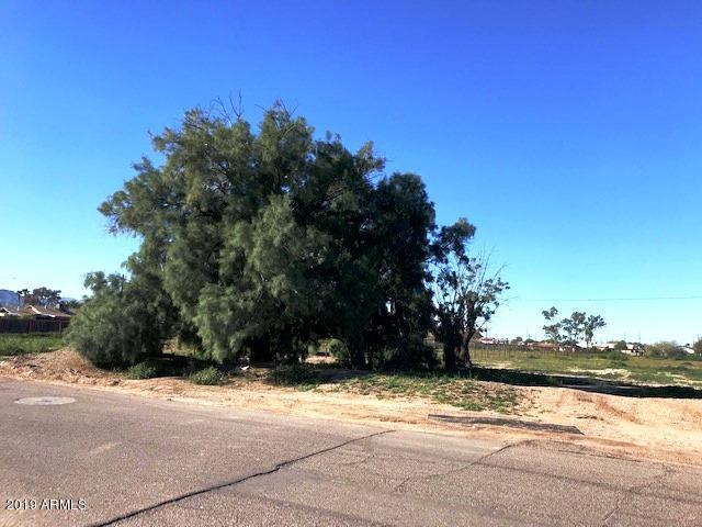 4024 S 3rd Avenue, Phoenix, AZ 85041 (MLS #5871674) :: Yost Realty Group at RE/MAX Casa Grande