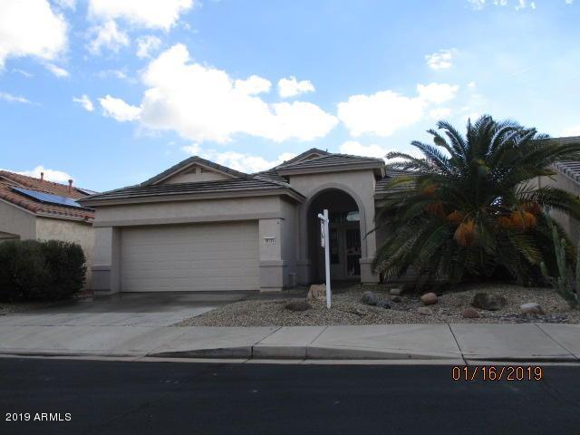 18133 W Camino Real Drive, Surprise, AZ 85374 (MLS #5872217) :: Group 46:10