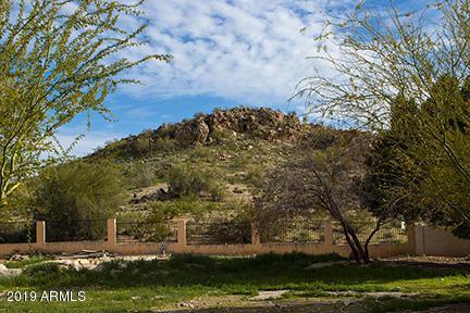 3051 E Rock Wren Road E, Phoenix, AZ 85048 (MLS #5875388) :: CC & Co. Real Estate Team